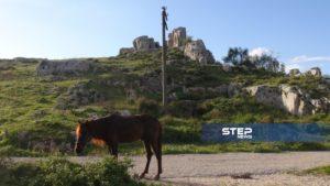 قلعة بداما الاثرية6