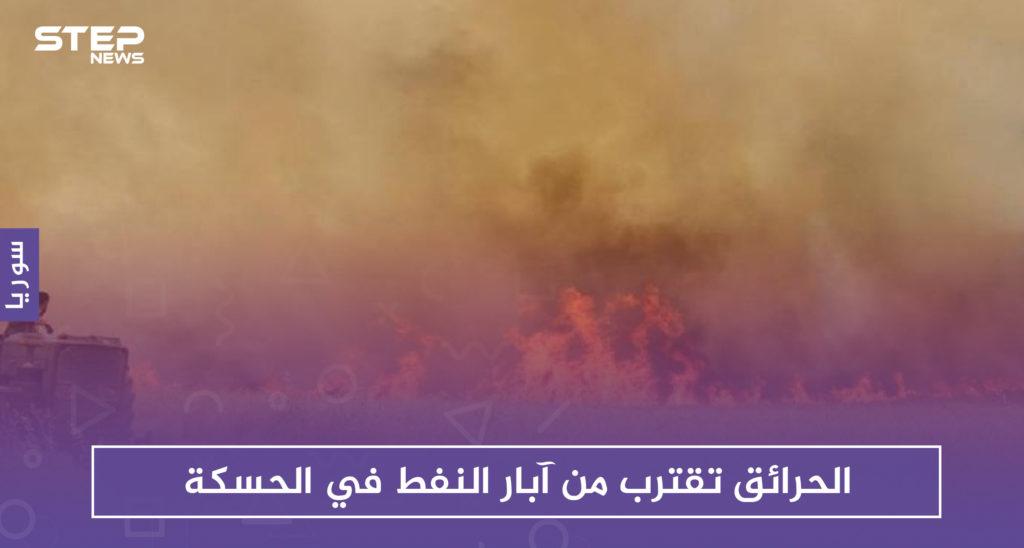 """الحرائق تقترب من آبار النفط في الحسكة.. و""""قسد"""" تستغيث بالتحالف الدولي"""
