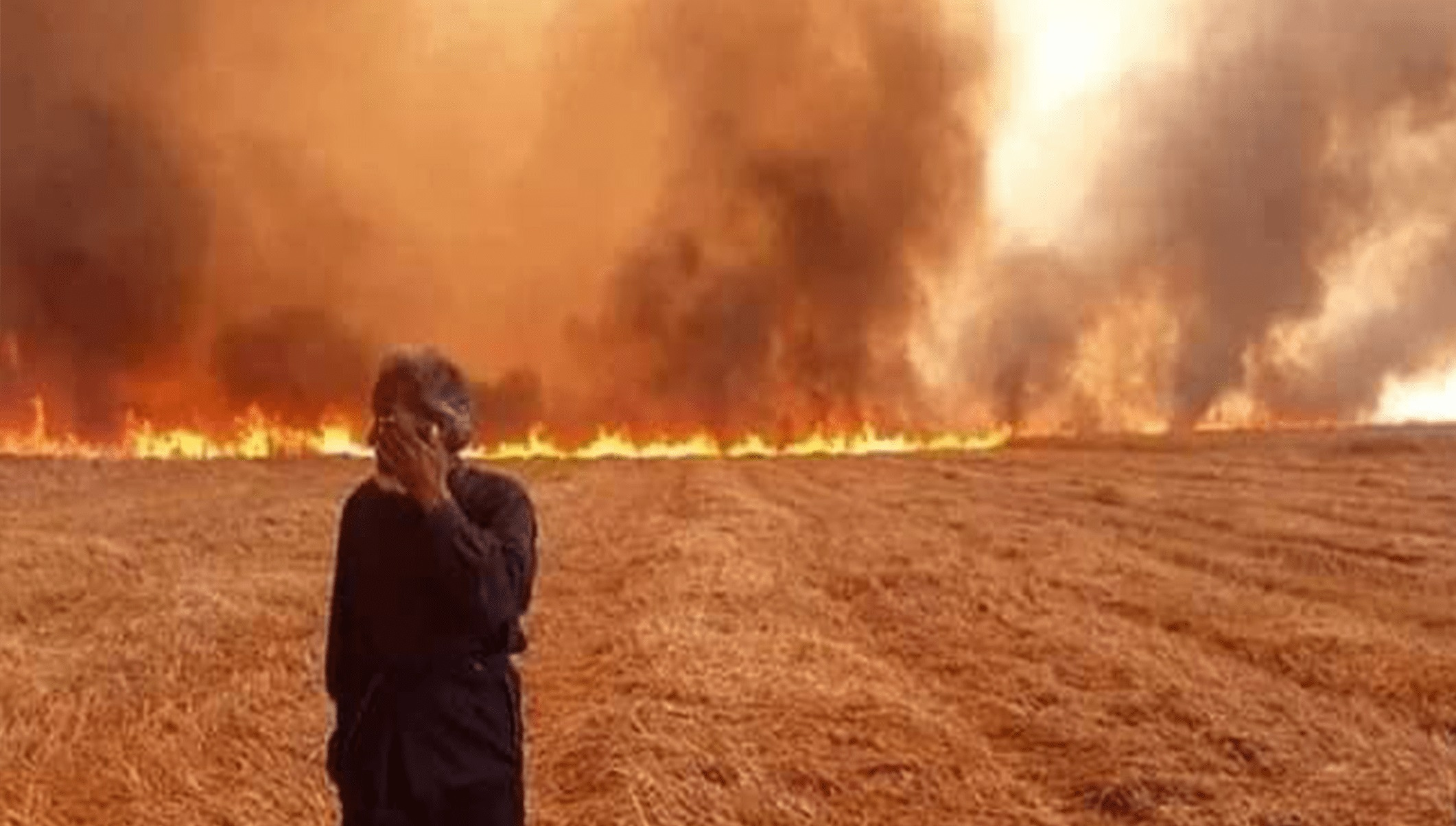 الإدارة الذاتية تكشف عن خسائر بالمليارات نتيجة حرائق الشمال الشرقي من سوريا