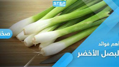 أهم فوائد البصل الأخضر
