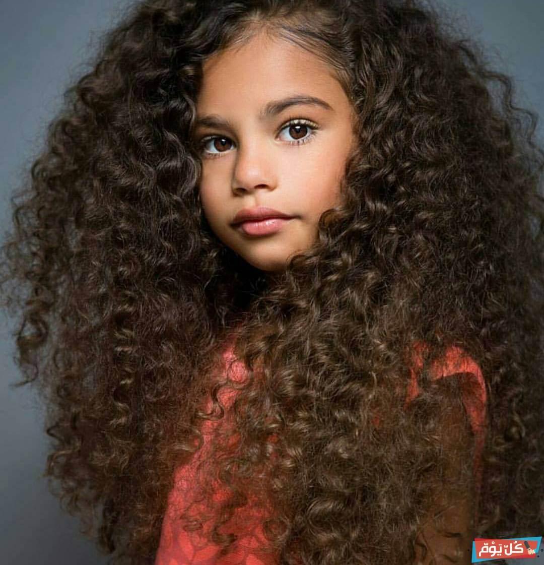 الشعر واختيارها و افضل زيت لشعر الاطفال الكيرلي