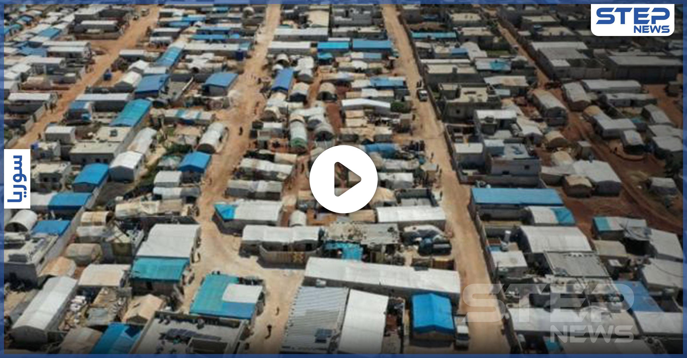 حشرة سامة غريبة تظهر في مخيمات إدلب