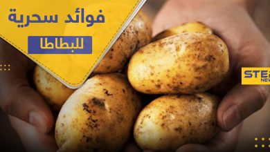 البطاطا.. 4 فوائد سحرية منها تخفيف الوزن