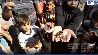 بالفيديو|| الشرطة العسكرية التابعة للمعارضة تقتحم مخيمًا للنازحين باعزاز.. وتعتدي على النساء بالرصاص والضرب