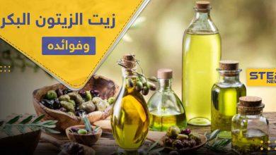 تعرف على أهم فوائد زيت الزيتون البكر على صحة الإنسان واستخدامه بعلاج الأمراض