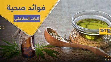 """7 فوائد صحية لا تعرفها عن نبات السنامكي ووصية من الرسول """"محمد"""""""