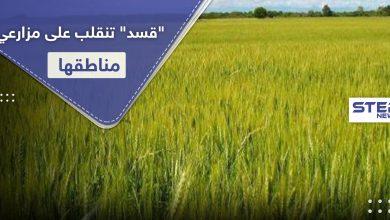 crops 204062020