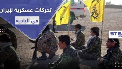 iranian militias 229062020