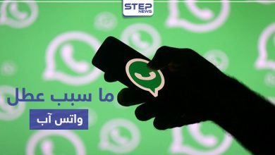 whats app 219062020