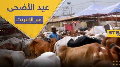 دولة مسلمة تحث مواطنيها على ذبح الأضاحي عبر الإنترنت هذا العيد.. وتبرر موقفها