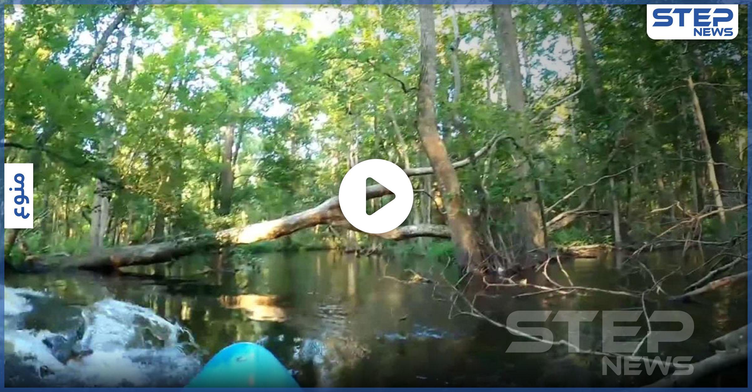 بأعجوبة ينجو رجل من فكّي تمساح هاجم قاربه