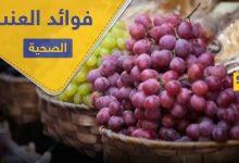 فوائد العنب وخواصه المتميزة في علاج الأمراض