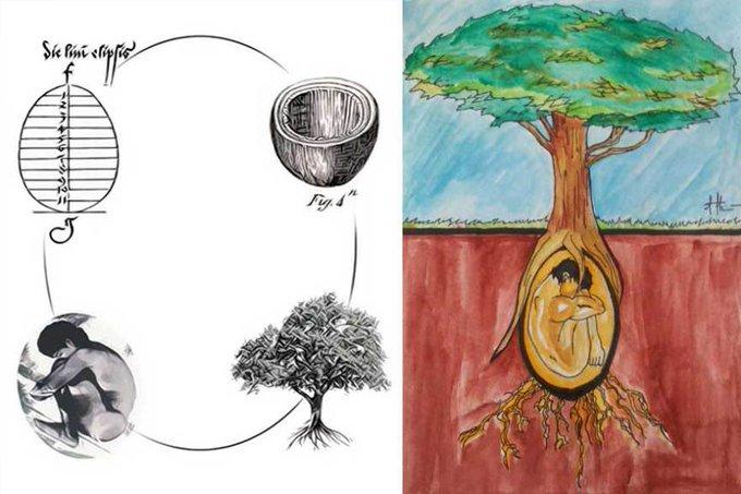 فيديو || إيطاليان يخترعان كبسولة دفن تحول جثتك إلى شجرة بعد موتك