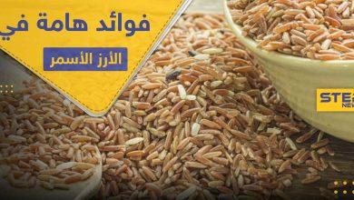 6 فوائد هامة لصحة الإنسان في الأرز الأسمر تميزه عن الأبيض