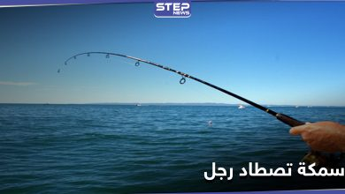 fish 215082020