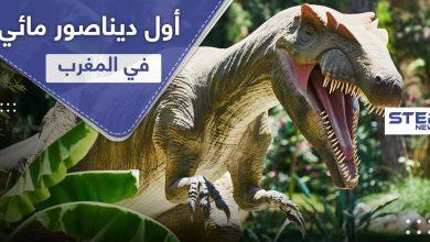 عاش في أنهار المغرب.. اكتشاف أول ديناصور مائي في العالم