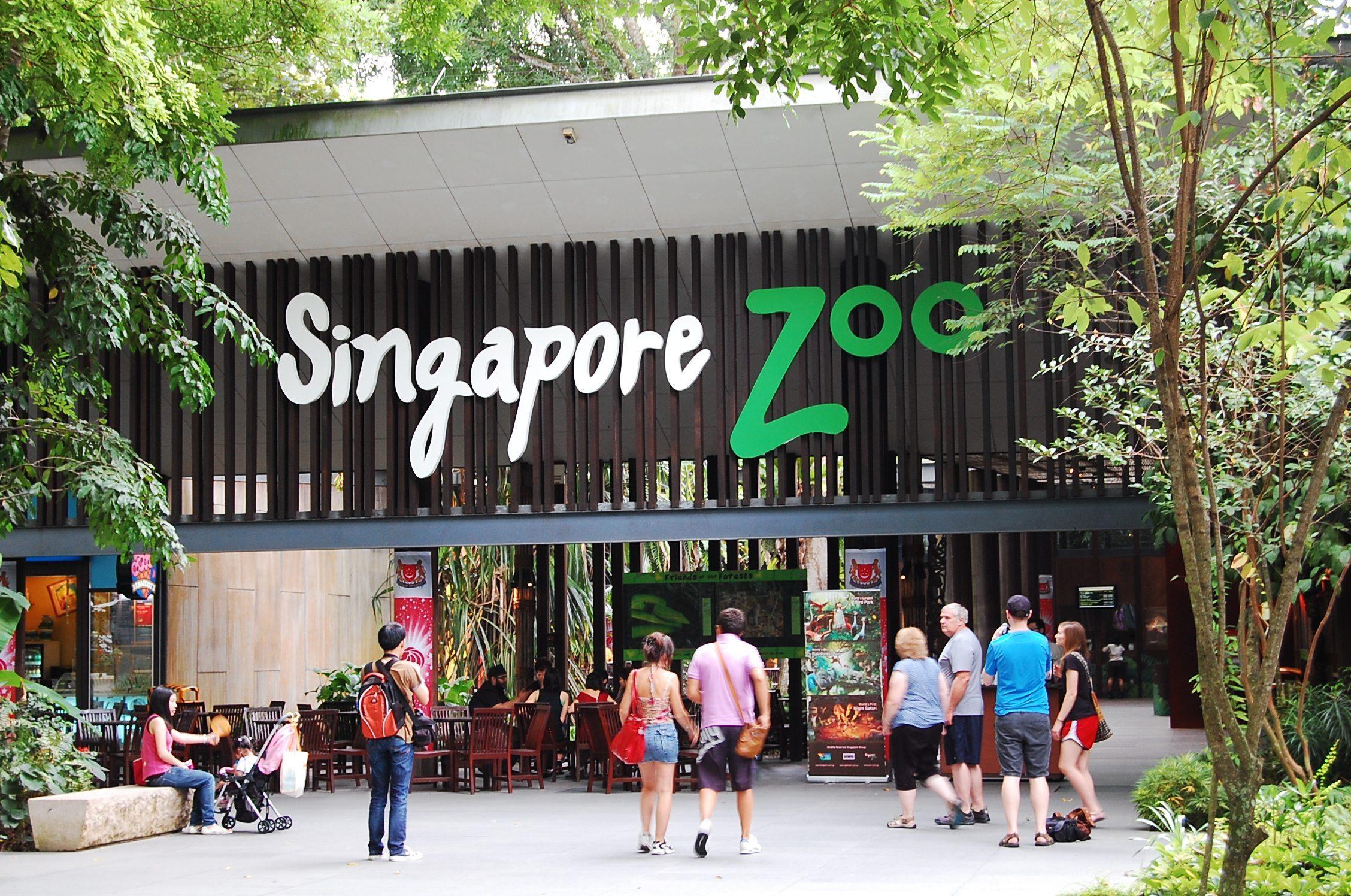 السياحة في سنغافورة - حديقة حيوانات سنغافورة