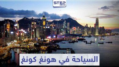 السياحة في هونغ كونغ .. عالم لاستكشاف الحياة البرية