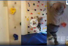 بالفيديو || سبايدرمان الـ رضيع يثير الدهشة على مواقع التواصل الاجتماعي