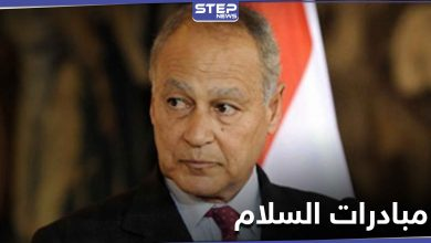 أمين عام الجامعة العربية يكشف الأمر الذي نجحت فيه مبادرات السلام مع إسرائيل ودور الفلسطينين