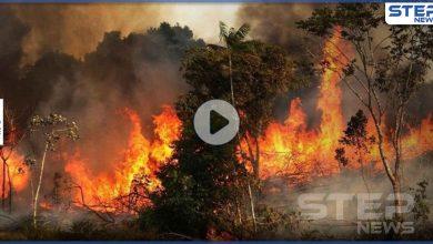 بالفيديو   مشاهد مرعبة بتصوير جوي لحجم الحرائق في سوريا واقترابها من قطع عسكرية