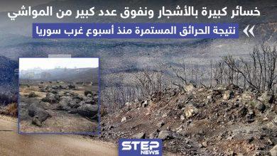 خسائر كبيرة بالأشجار و المواشي جراء الحرائق المستمرة منذ أسبوع غرب سوريا
