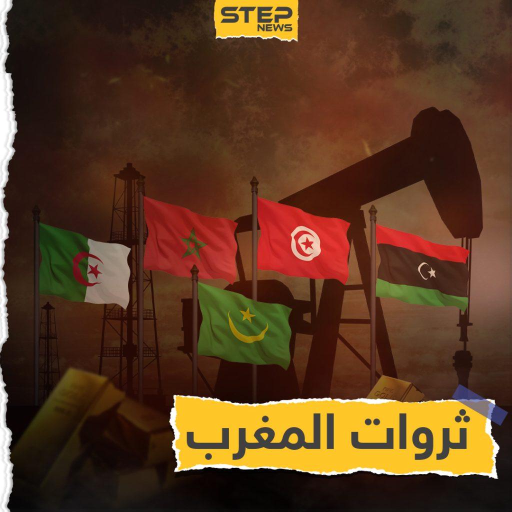 نهضة كُبرى يمكنها انتشاله من الفقر والبطالة.. المغرب العربي وثرواته الضائعة