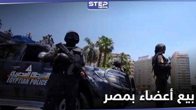 السلطات المصرية تقبض على عصابة بيع أعضاء بشرية بمساندة الأهالي