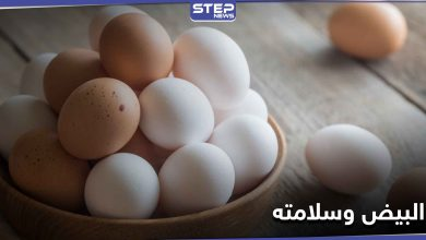 أخطر على صحة الإنسان من السم.. 6 أنواع من البيض يحذر الخبراء منها