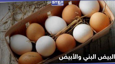 هل تساءلت يوماً عن الفرق بين البيض البني والأبيض.. إليك الإجابة