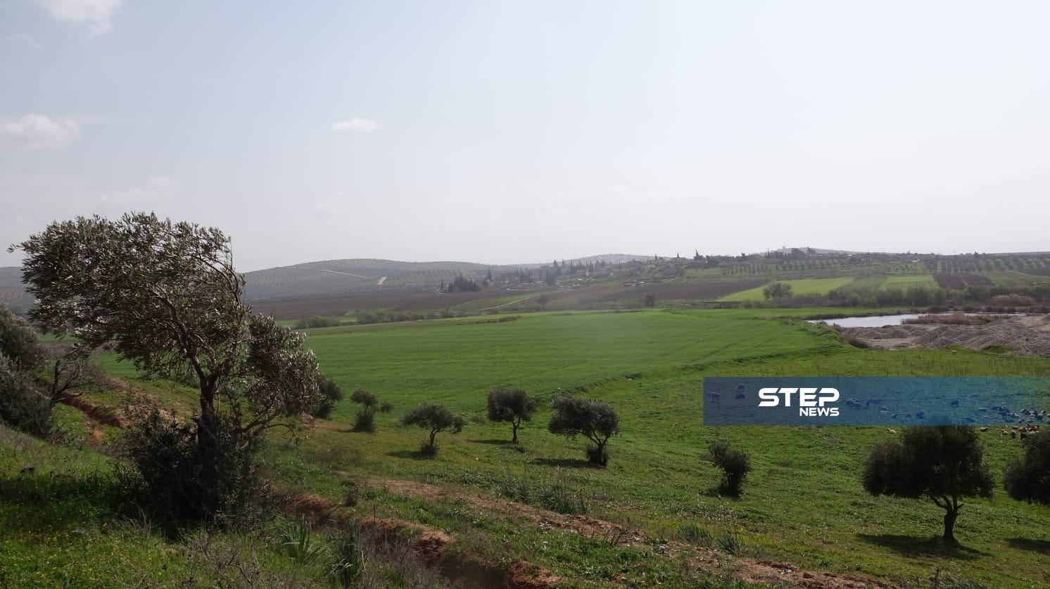 خاص|| عفرين.. محطات هامة من لحظة خروجها من قبضة الأسد وصولًا لتهجير أهلها على يد المعارضة الموالية لتركيا