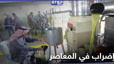 """إضراب معاصر الزيتون في مدينة الرقة ومحيطها لإجبار """"قسد"""" على تحقيق شرطهم"""