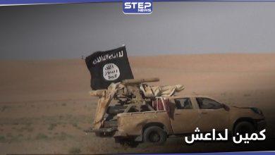 26 قتيلًا من قوات النظام السوري بينهم ضابط في كمين لداعش