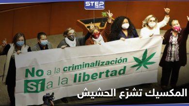 مجلس الشيوخ المكسيكي يسمح بتعاطي وتجارة الماريجوانا في البلاد