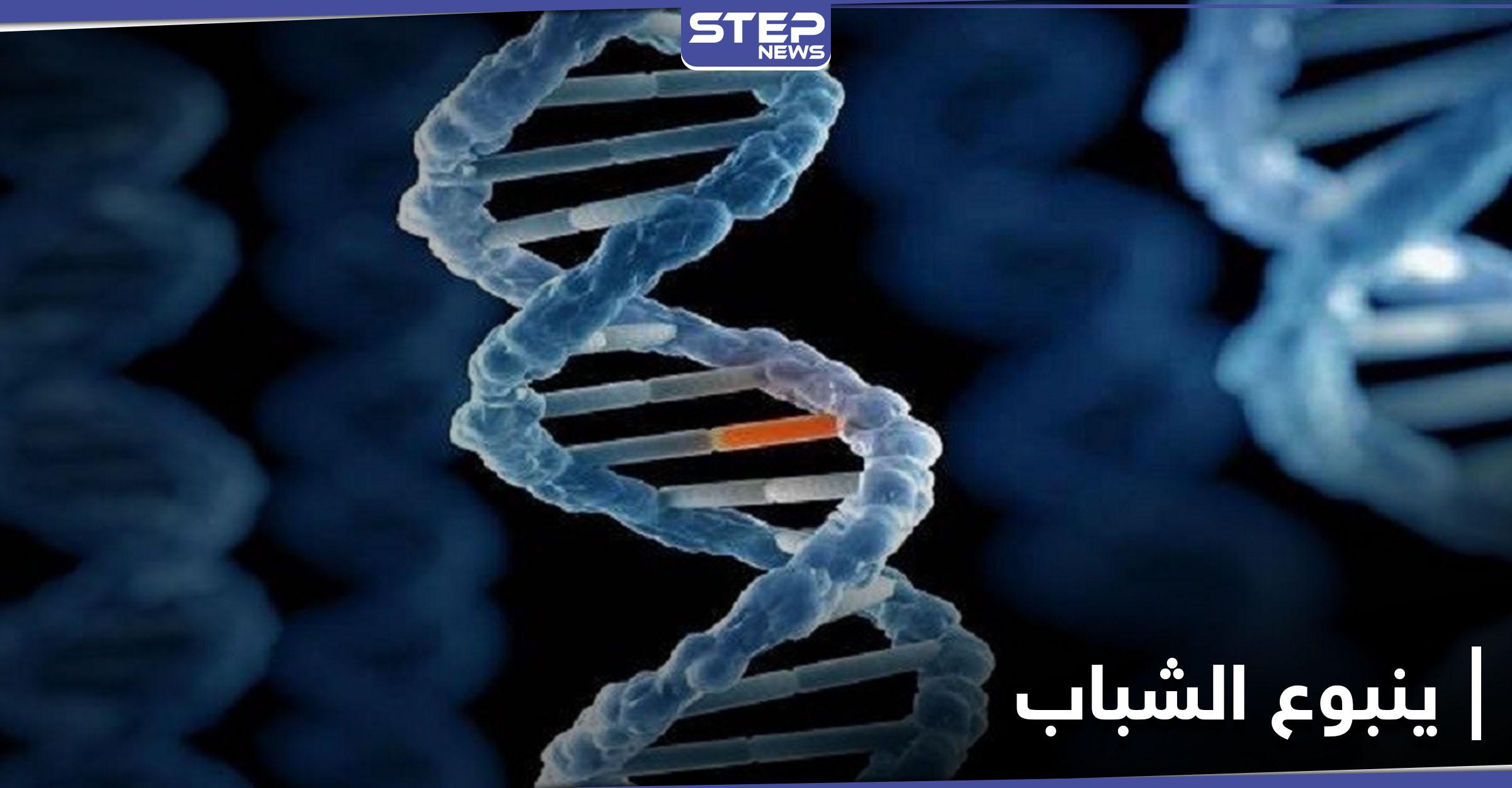 ينبوع الشباب.. اكتشاف طفرة جينية نادرة