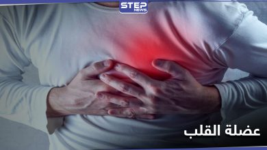 heart 224112020