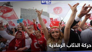 حركة الذئاب الرمادية التركية