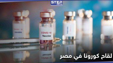 مصر تستقبل 50 ألف جرعة من لقاح كورونا الصيني.. وتكشف عن الفئات التي ستتلقاه