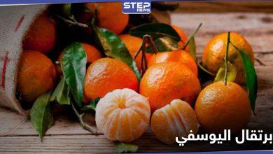 """""""الطريقة الأمثل والوقت الأفضل"""" لتناول برتقال اليوسفي والحصول على فوائده بشكل أفضل"""