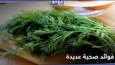 elshabit 226012021