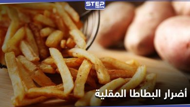 french fries 219012021
