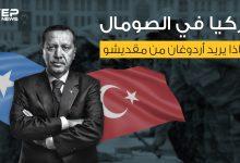 اتفاقيات اقتصادية وقواعد عسكرية ونفوذ ... ماذا تريد تركيا من الصومال؟