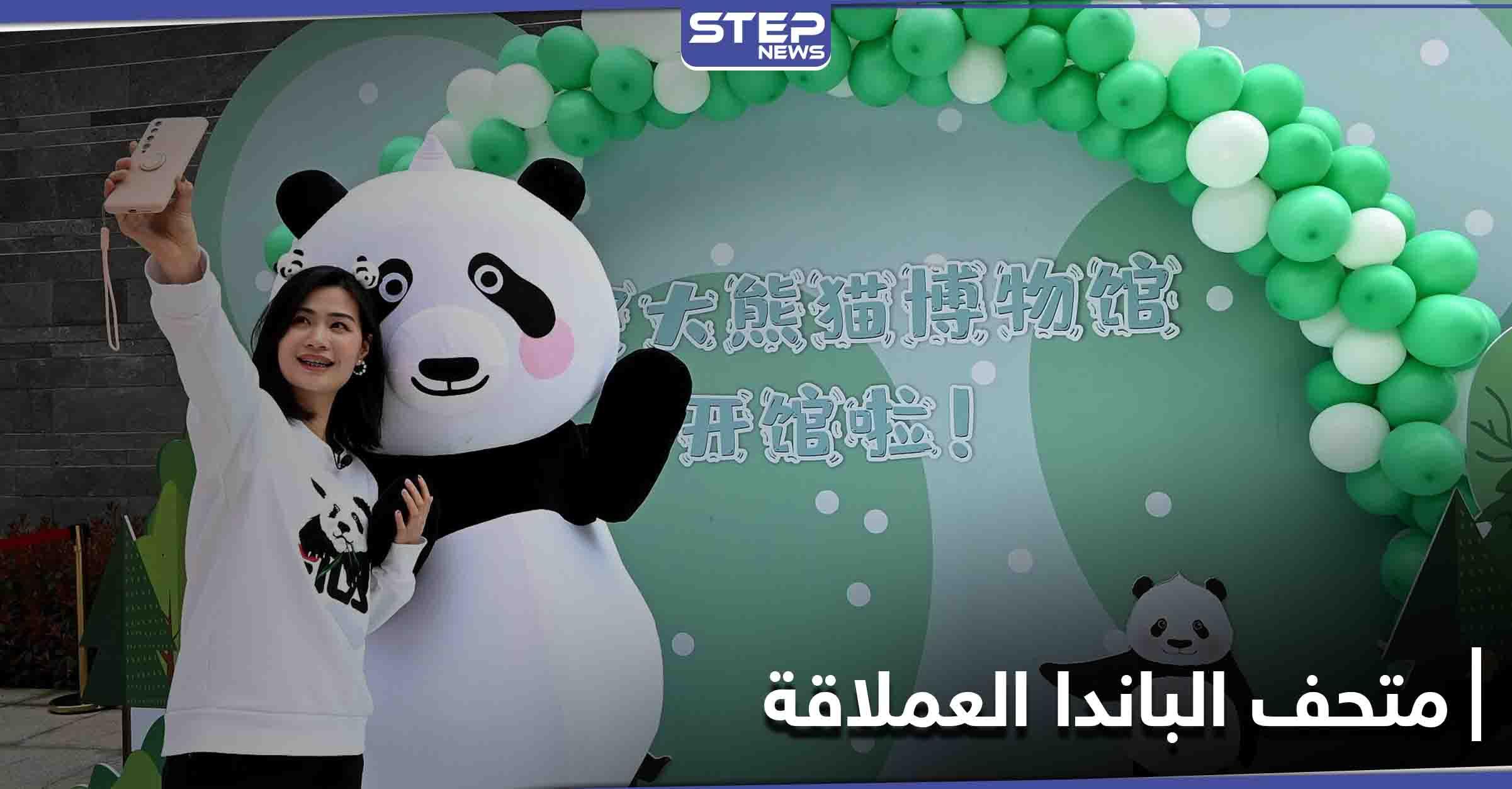 الأول من نوعه في العالم.. متحف تفاعلي لـ الباندا العملاقة في الصين