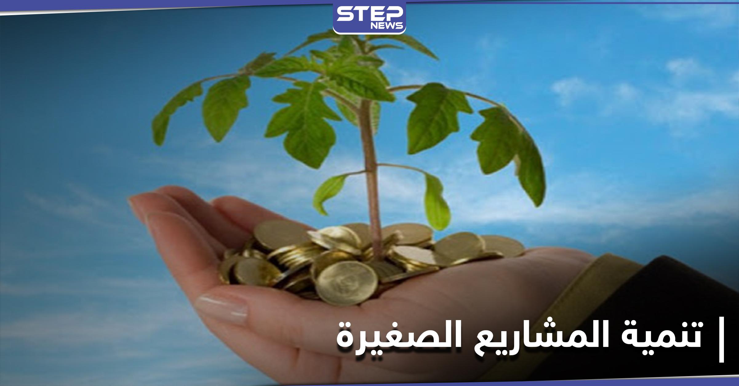 دولة عربية مرشحة للتقدم عالمياً في توطين شركات التكنولوجيا الناشئة