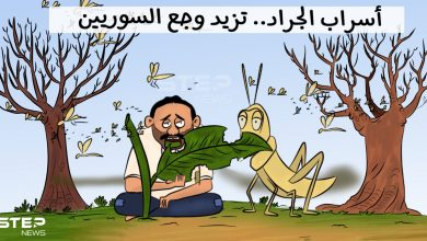أسراب الجراد تهاجم سوريا