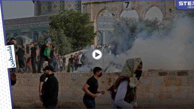 بالفيديو || مواجهات في باحات المسجد الأقصى بعد تنفيذ القوات الإسرائيلية لاقتحامٍ جديد