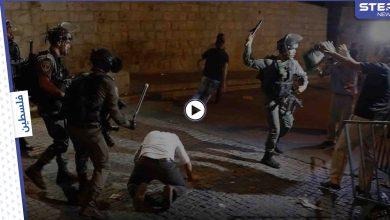 بالفيديو || إصابات في احتجاجات رافضة للاستيطان بحي الشيخ جراح في القدس