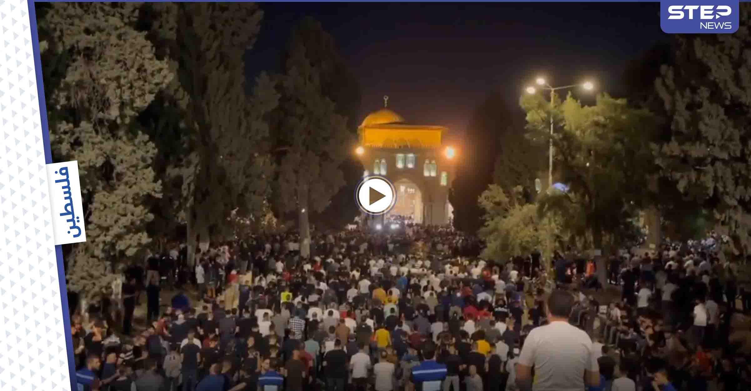 رغم العراقيل الإسرائيلية.. 90 ألف فلسطيني يحيون ليلة القدر في الأقصى وسط بكاء ودعاء (فيديو)