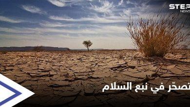 """أزمة وقود تعطّل الأفران وتهدد محاصيل زراعية في مناطق """"نبع السلام"""""""