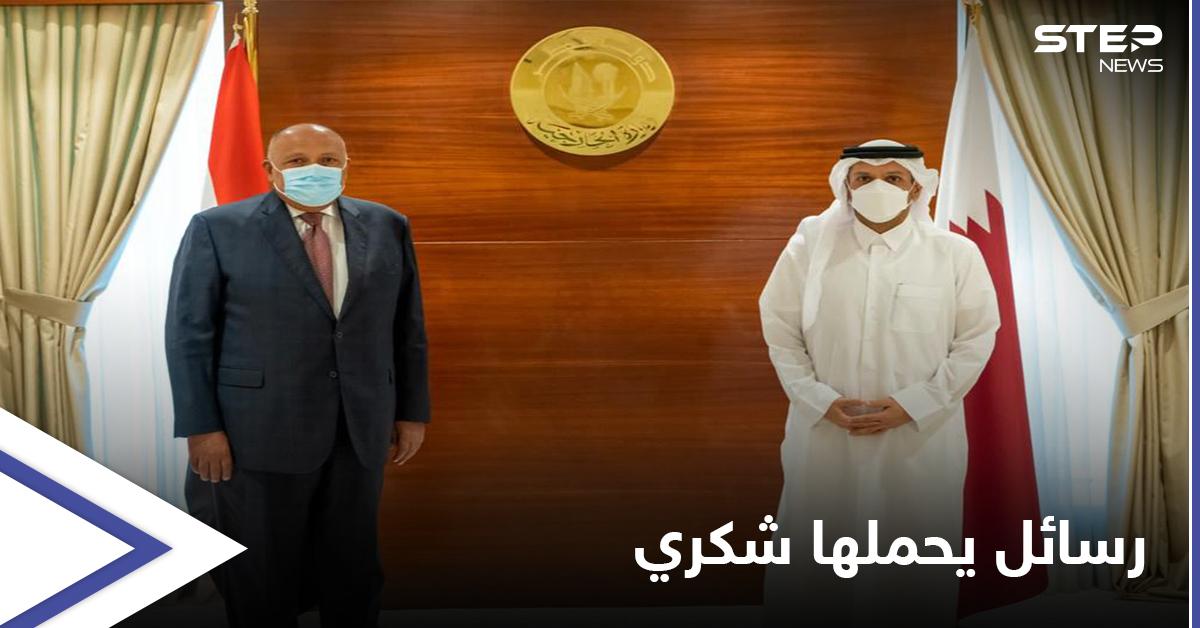 سامح شكري من الدوحة: لدينا رسالة قوية لإثيوبيا ونتحفّظ على سياسات أنقرة
